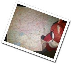 IMG-20111216-000341